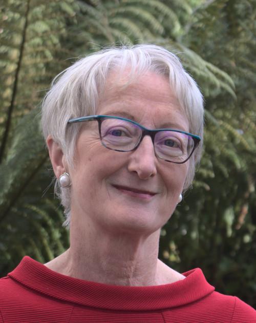 Professor Maeve McDonagh