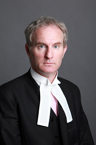 Micheál P. O'Higgins